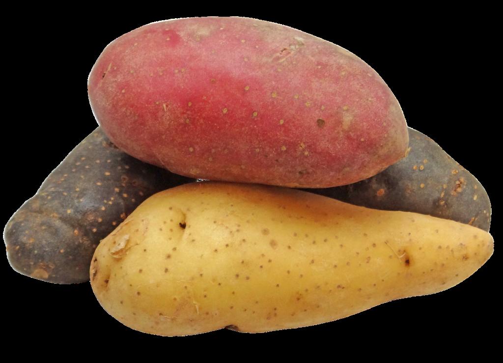 potato-2147541_1920