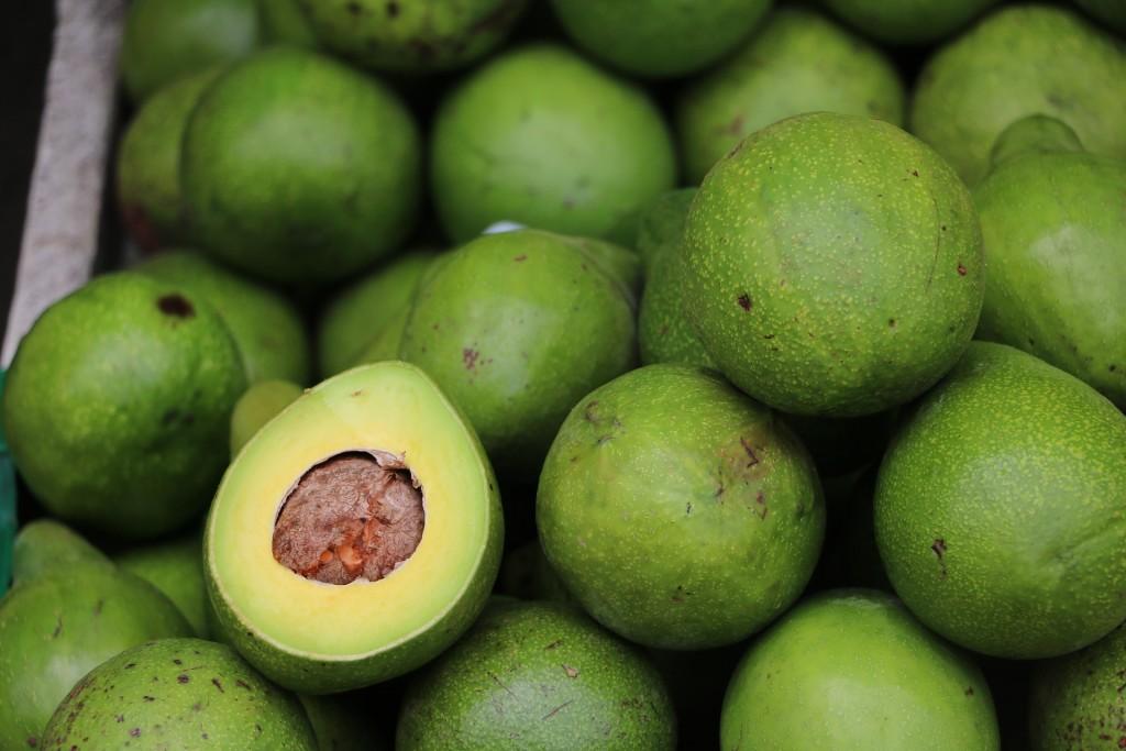 avocado-2742200_1920